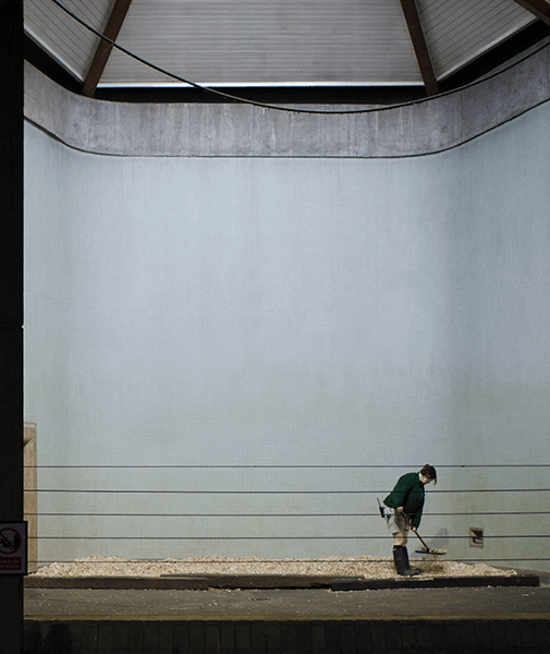 Light contrast with view on a man cleaning a zoo cage